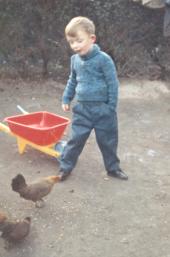 1963 - duiven of kippen