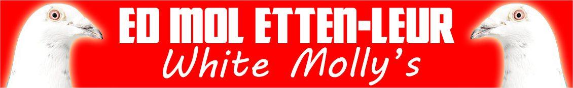 Ed Mol – Etten Leur